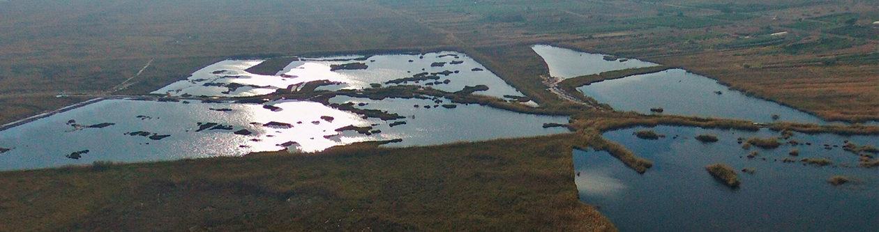 Càdec, Taller de Gestió Ambiental, S.L. – Wildlife Management