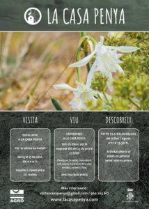 C dec taller de gesti ambiental s l wildlife management - Murcielago en casa significado ...